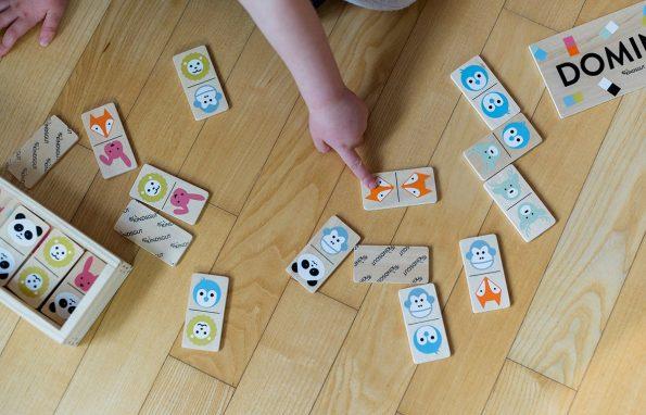 Kindsgut-fa-domino-allatkert-5